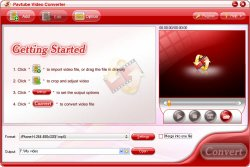 video converter avi dvd wmv mpeg
